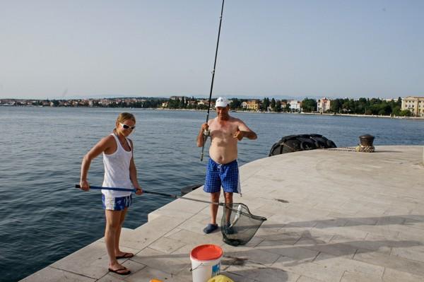 Zadar Harbor fishing
